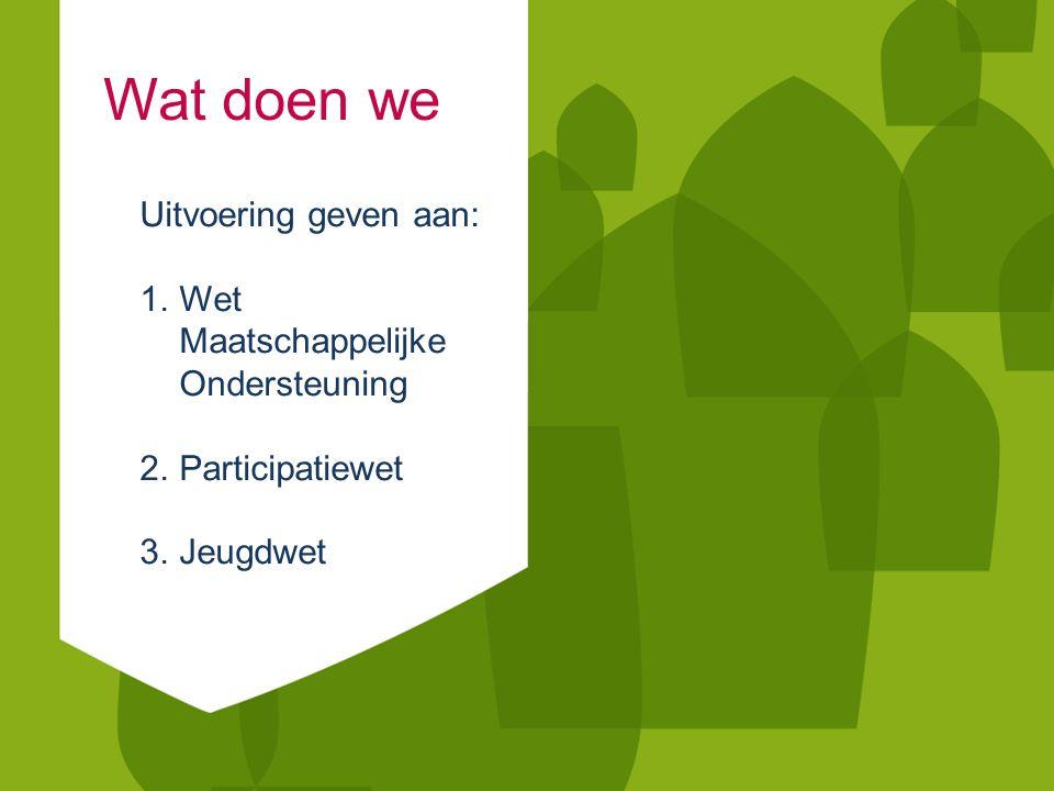 Wat doen we Uitvoering geven aan: 1.Wet Maatschappelijke Ondersteuning 2.Participatiewet 3.Jeugdwet