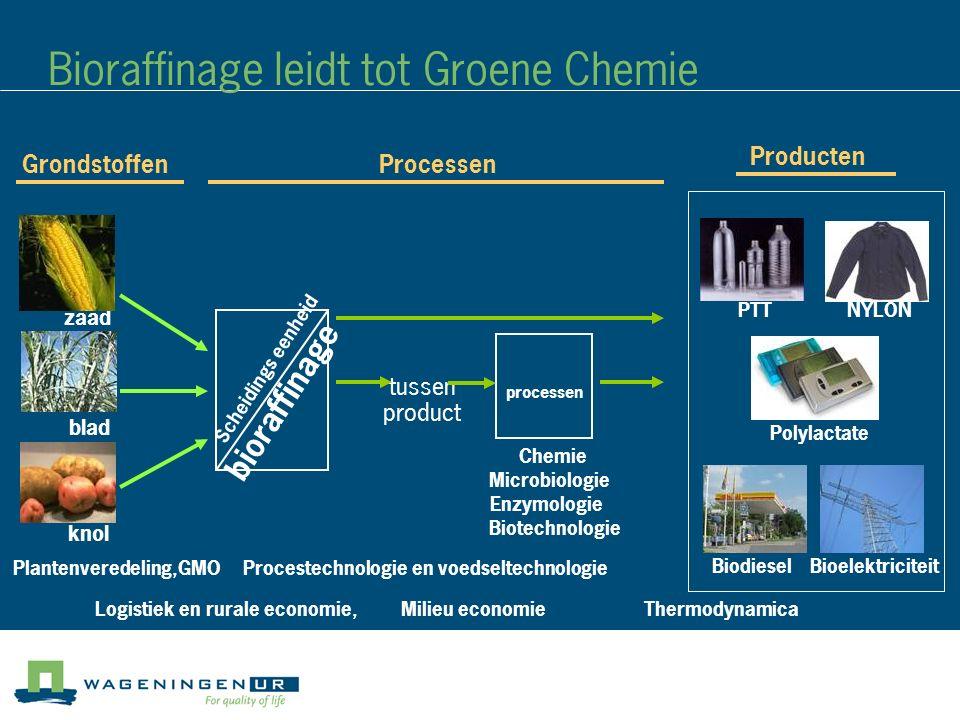 Bioraffinage leidt tot Groene Chemie Producten tussen Scheidings eenheid processen zaad blad knol product GrondstoffenProcessen bioraffinage PTTNYLON