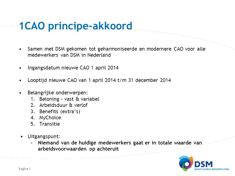 Pagina1 Samen met DSM gekomen tot geharmoniseerde en modernere CAO voor alle medewerkers van DSM in Nederland Ingangsdatum nieuwe CAO 1 april 2014 Loo