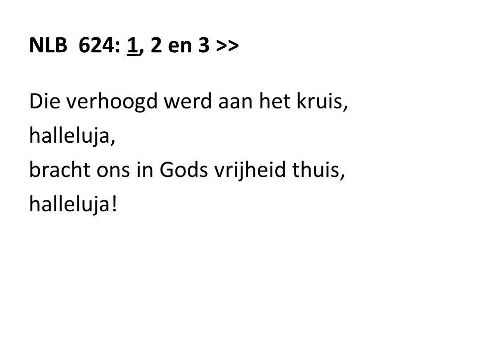 NLB 624: 1, 2 en 3 >> Die verhoogd werd aan het kruis, halleluja, bracht ons in Gods vrijheid thuis, halleluja!