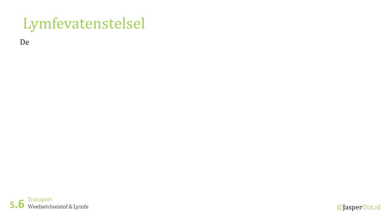 Transport 5.6 ©JasperOut.nl Weefselvloeistof & Lymfe Lymfevatenstelsel De