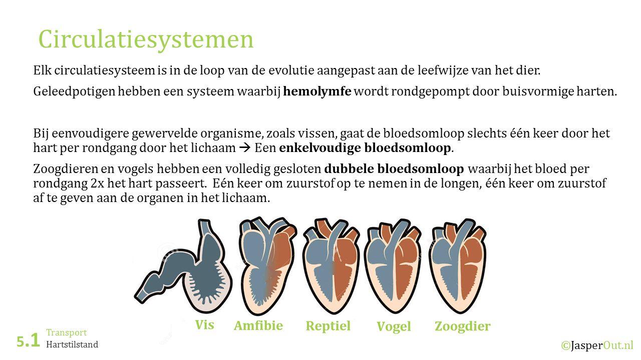 Transport 5.1 ©JasperOut.nl Hartstilstand Circulatiesystemen Elk circulatiesysteem is in de loop van de evolutie aangepast aan de leefwijze van het dier.