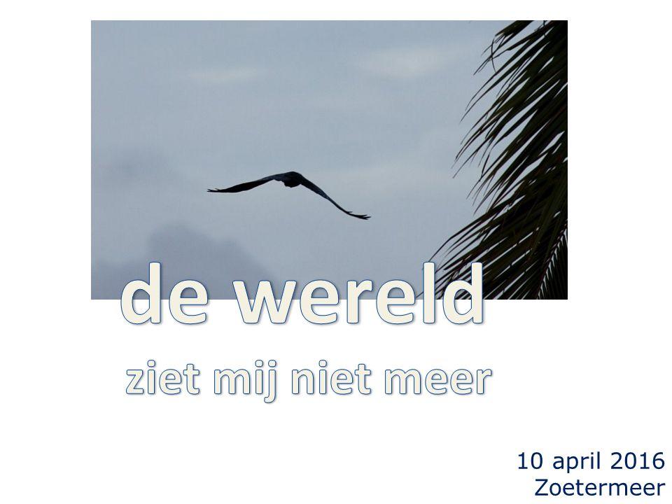 10 april 2016 Zoetermeer