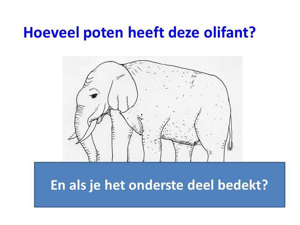 Hoeveel poten heeft deze olifant? En als je het onderste deel bedekt?