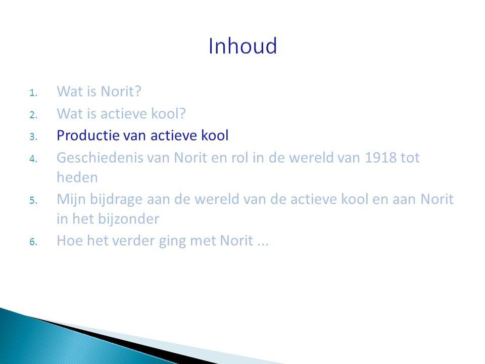 1. Wat is Norit? 2. Wat is actieve kool? 3. Productie van actieve kool 4. Geschiedenis van Norit en rol in de wereld van 1918 tot heden 5. Mijn bijdra