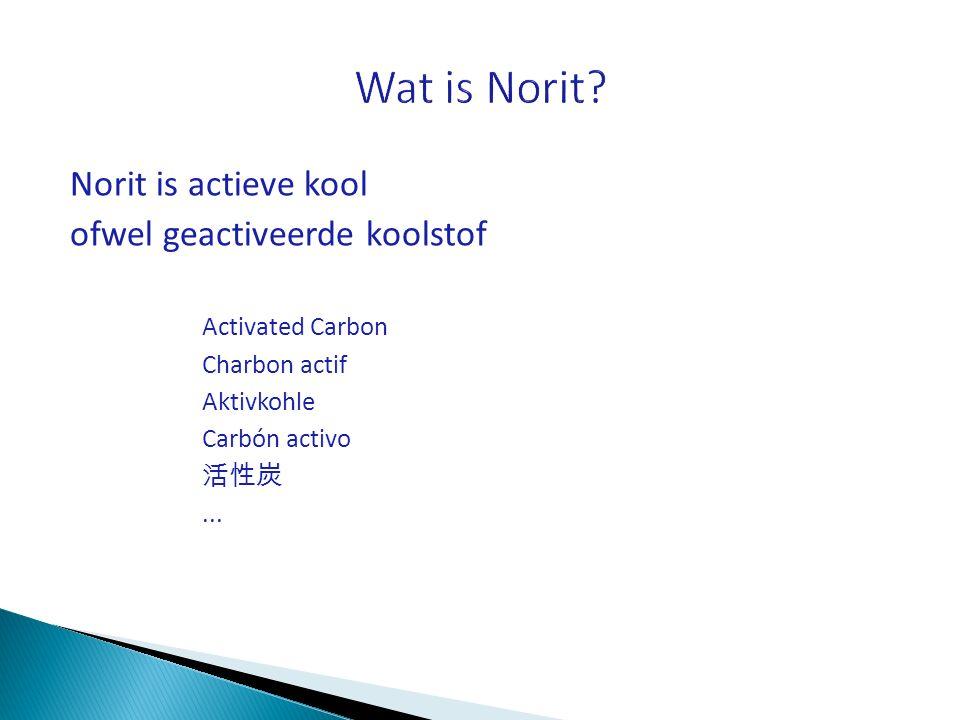 Norit is actieve kool ofwel geactiveerde koolstof Activated Carbon Charbon actif Aktivkohle Carbón activo 活性炭...