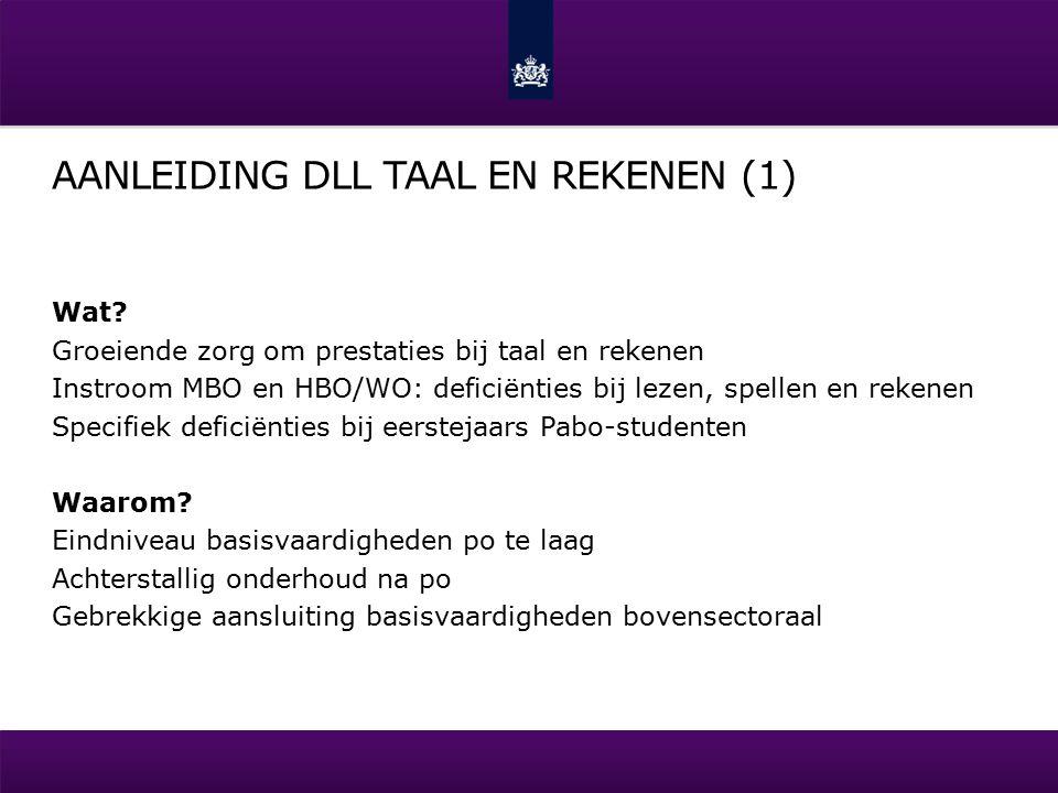 AANLEIDING DLL TAAL EN REKENEN (1) Wat.