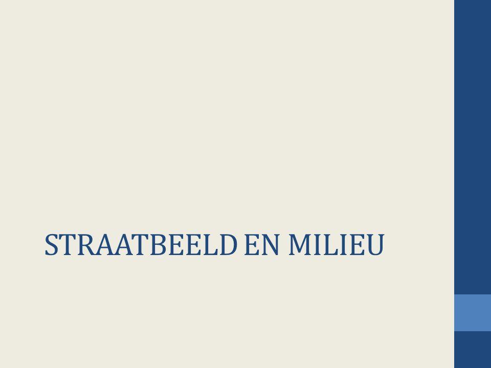 STRAATBEELD EN MILIEU