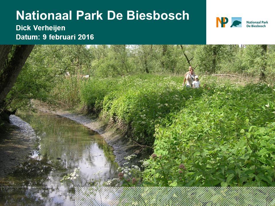 18/11/2015 Nationaal Park De Biesbosch Dick Verheijen Datum: 9 februari 2016