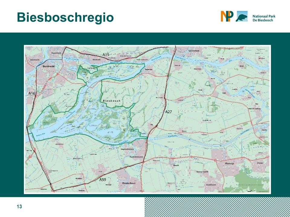 13 Biesboschregio