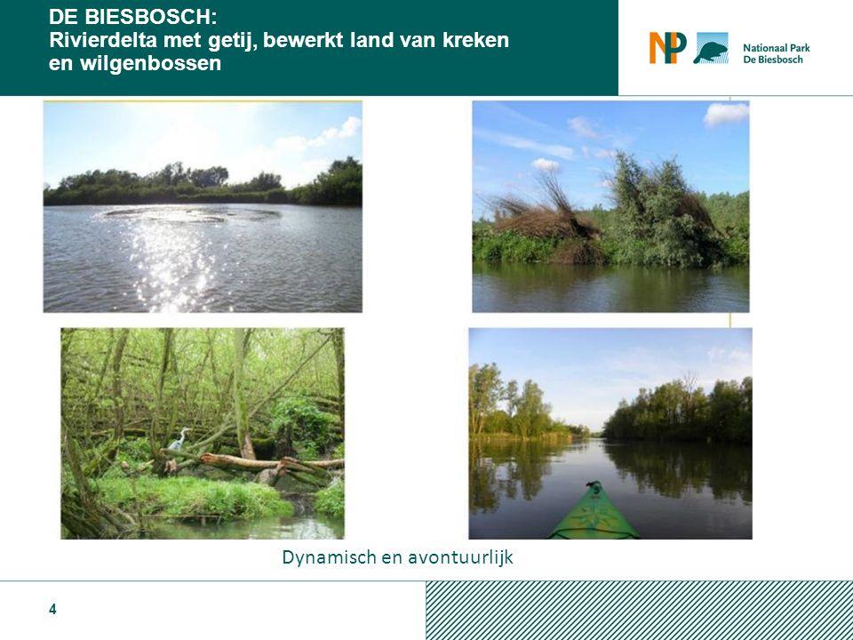 Toekomstvisie Biesbosch 2021 …………………..2011 ………………..
