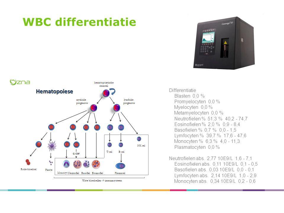WBC differentiatie Differentiatie Blasten 0,0 % Promyelocyten 0,0 % Myelocyten 0,0 % Metamyelocyten 0,0 % Neutrofielen % 51,3 % 40,2 - 74,7 Eosinofiel