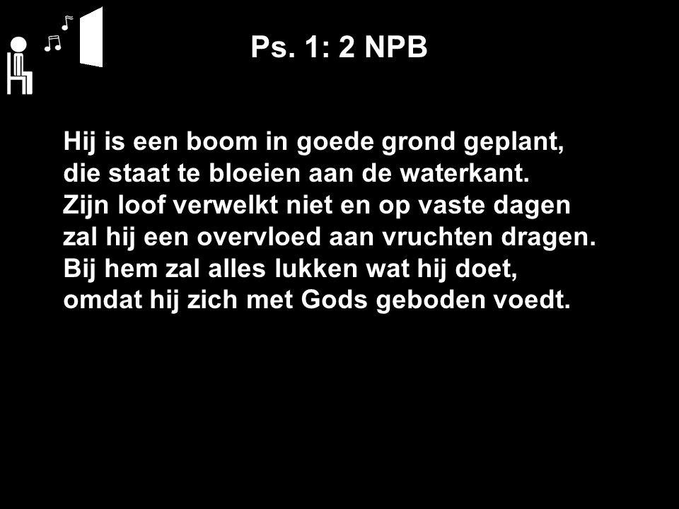 Ps. 1: 2 NPB Hij is een boom in goede grond geplant, die staat te bloeien aan de waterkant. Zijn loof verwelkt niet en op vaste dagen zal hij een over