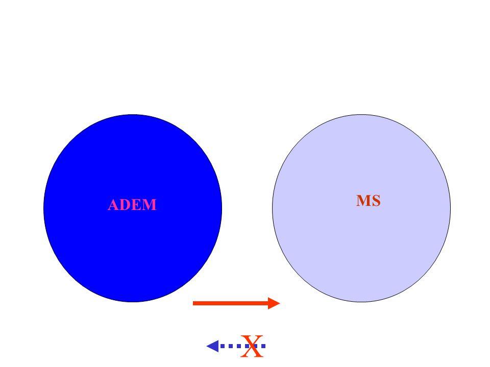 ADEM MS X