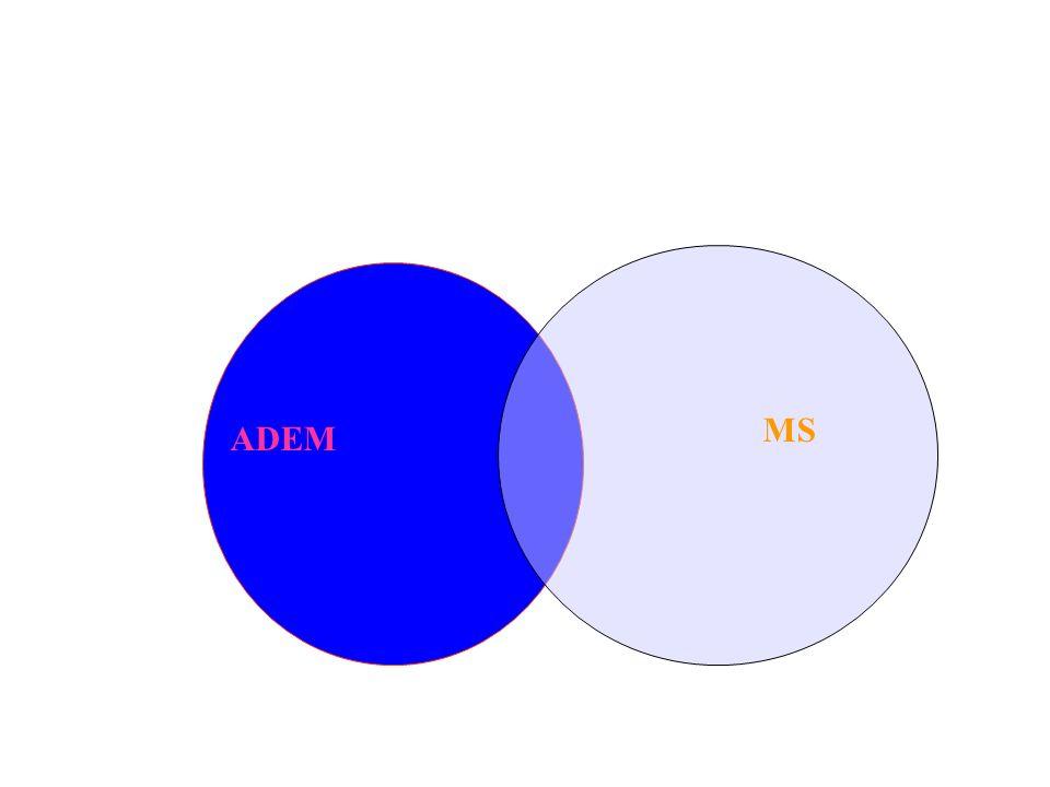 ADEM MS