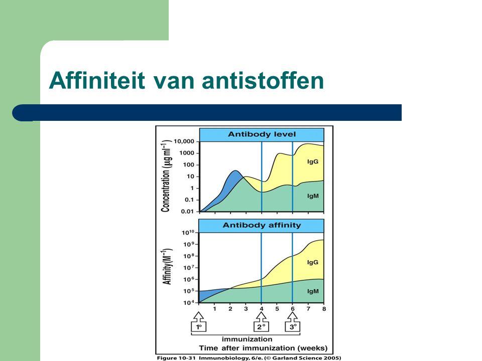 Affiniteit van antistoffen
