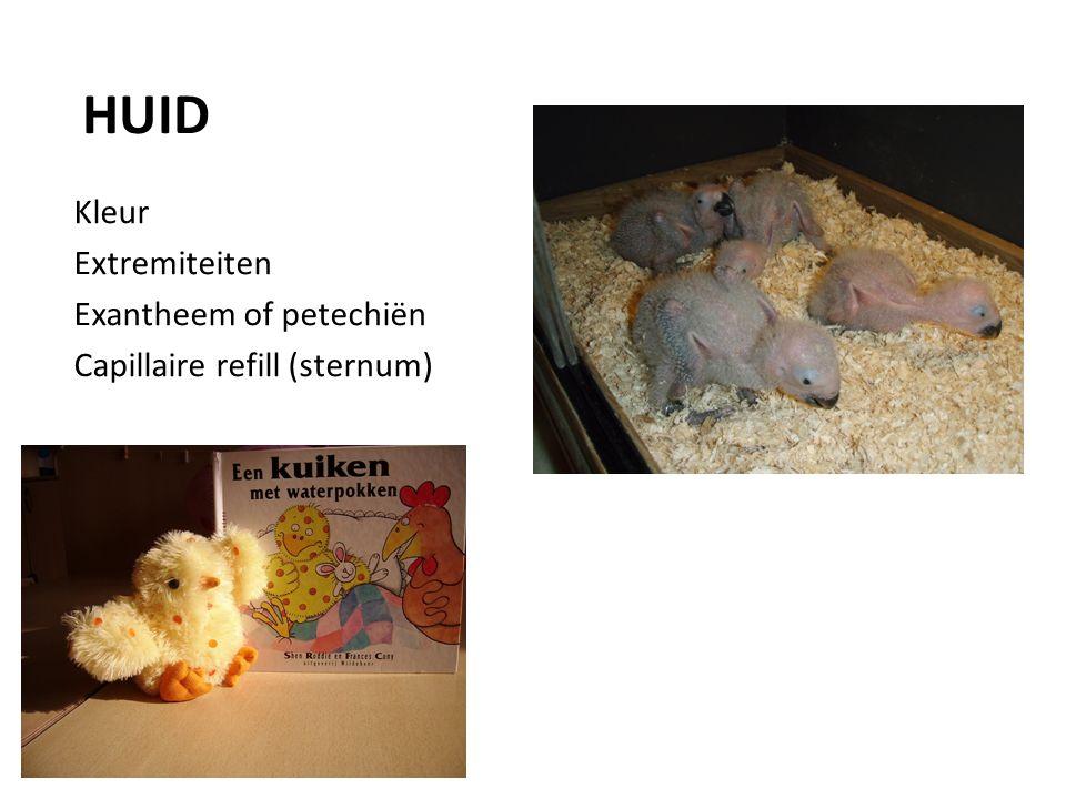 Kleur Extremiteiten Exantheem of petechiën Capillaire refill (sternum) HUID