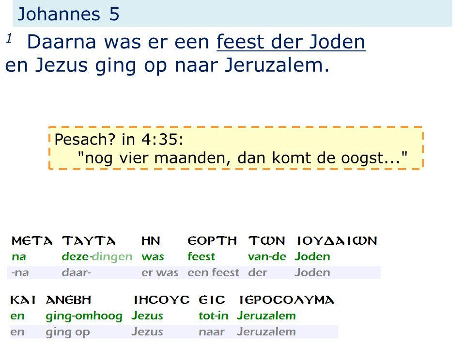 Johannes 5 1 Daarna was er een feest der Joden en Jezus ging op naar Jeruzalem.