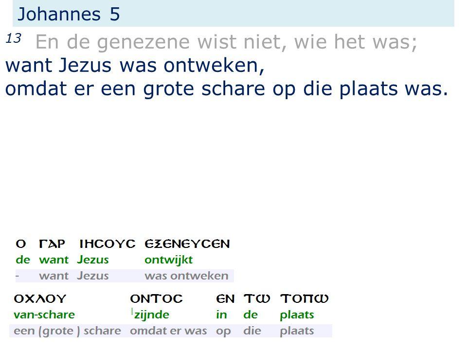 Johannes 5 13 En de genezene wist niet, wie het was; want Jezus was ontweken, omdat er een grote schare op die plaats was.