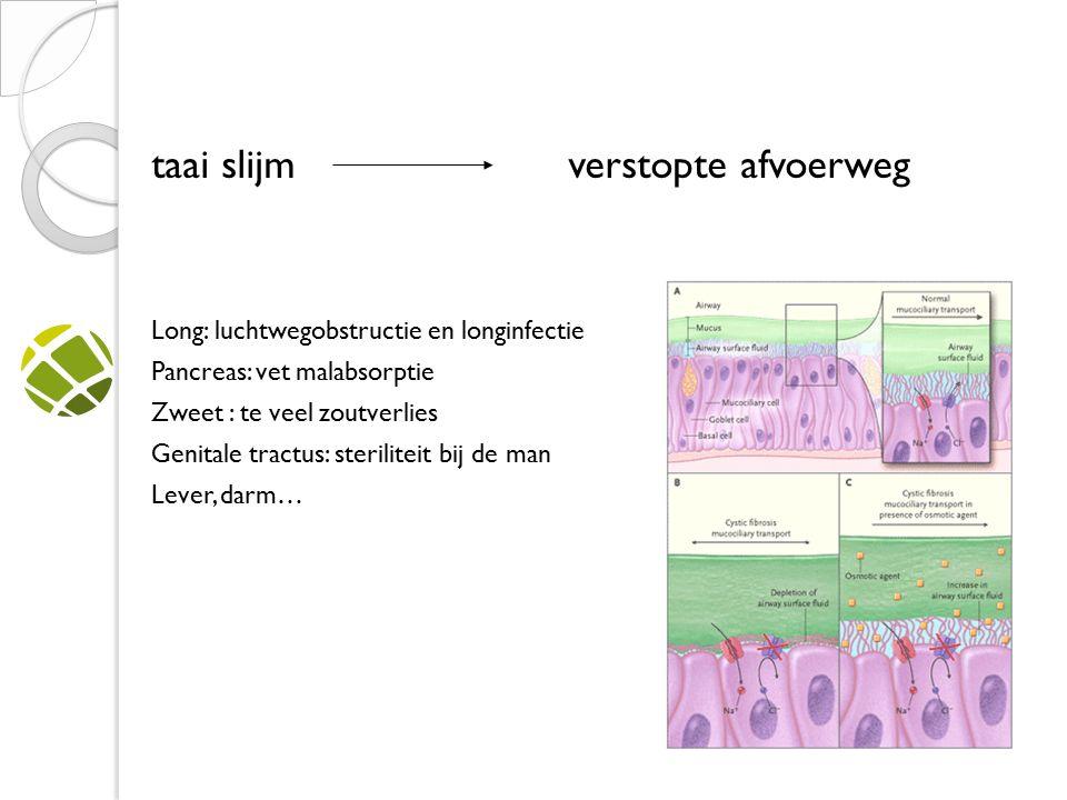 taai slijmverstopte afvoerweg Long: luchtwegobstructie en longinfectie Pancreas: vet malabsorptie Zweet : te veel zoutverlies Genitale tractus: steriliteit bij de man Lever, darm…