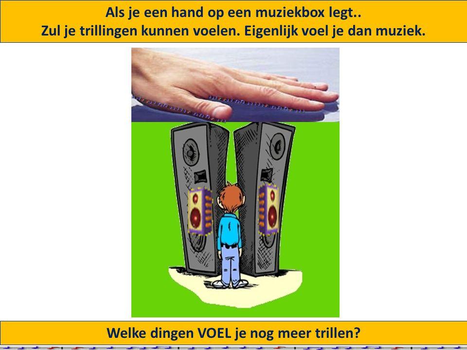 Welke dingen VOEL je nog meer trillen.Als je een hand op een muziekbox legt..