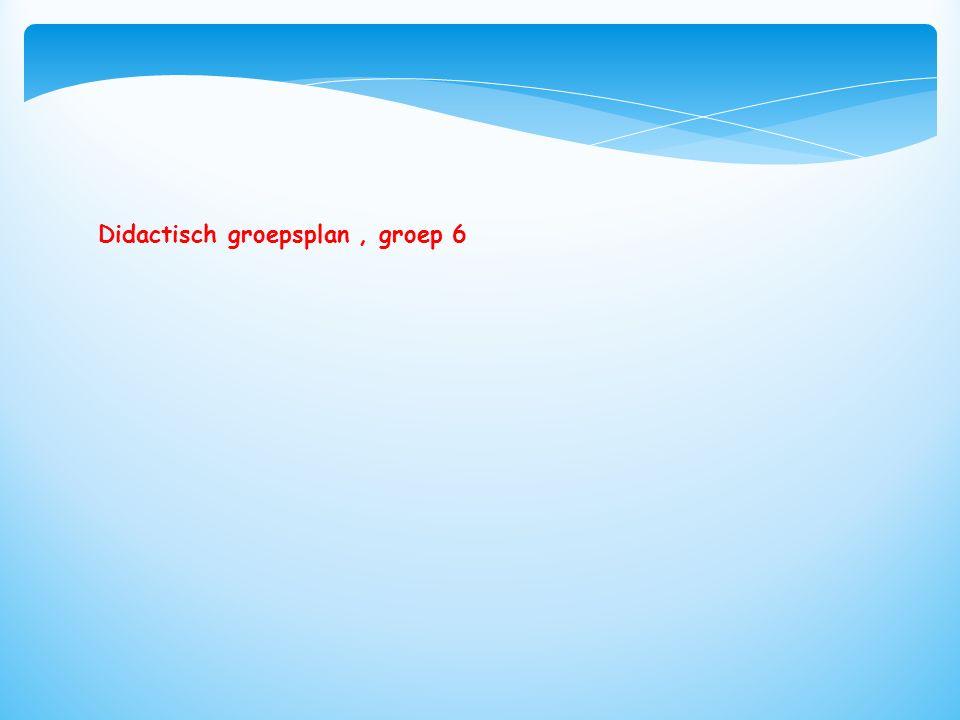 Didactisch groepsplan, groep 6