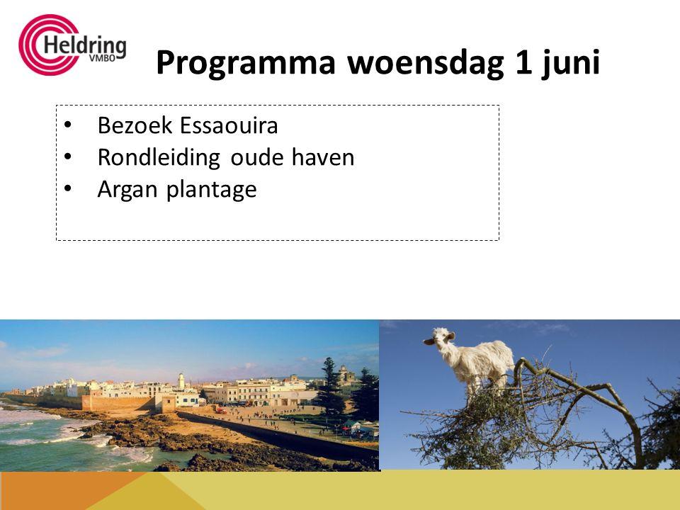 Programma woensdag 1 juni Bezoek Essaouira Rondleiding oude haven Argan plantage
