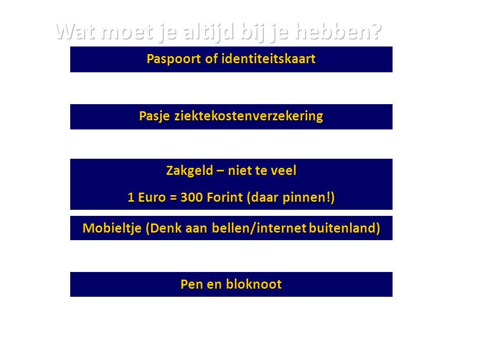 Paspoort of identiteitskaart Pasje ziektekostenverzekering Zakgeld – niet te veel 1 Euro = 300 Forint (daar pinnen!) Mobieltje (Denk aan bellen/intern