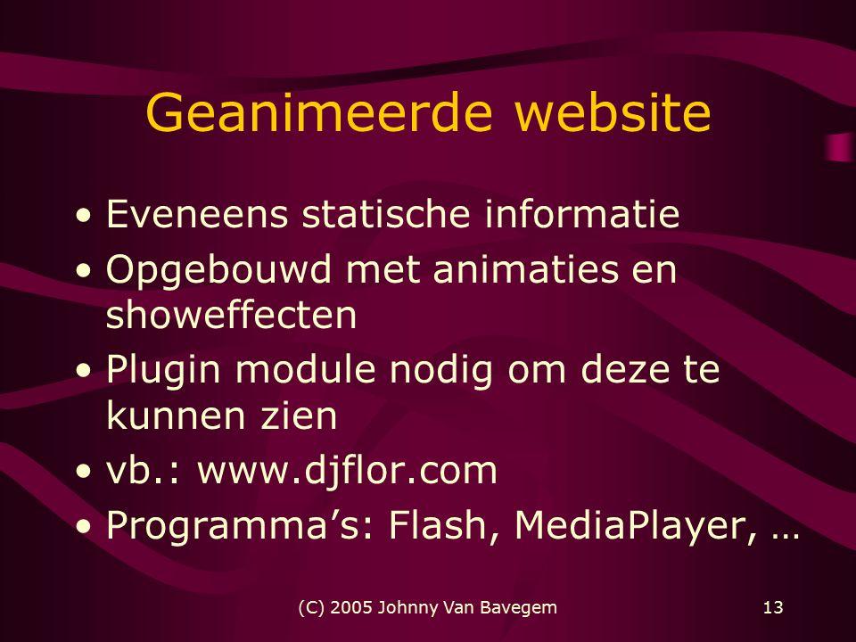 (C) 2005 Johnny Van Bavegem13 Geanimeerde website Eveneens statische informatie Opgebouwd met animaties en showeffecten Plugin module nodig om deze te kunnen zien vb.: www.djflor.com Programma's: Flash, MediaPlayer, …