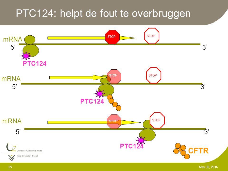 25 May 30, 2016 PTC124: helpt de fout te overbruggen STOP 5'3' mRNA STOP 5'3' mRNA STOP 5'3' mRNA STOP CFTR PTC124