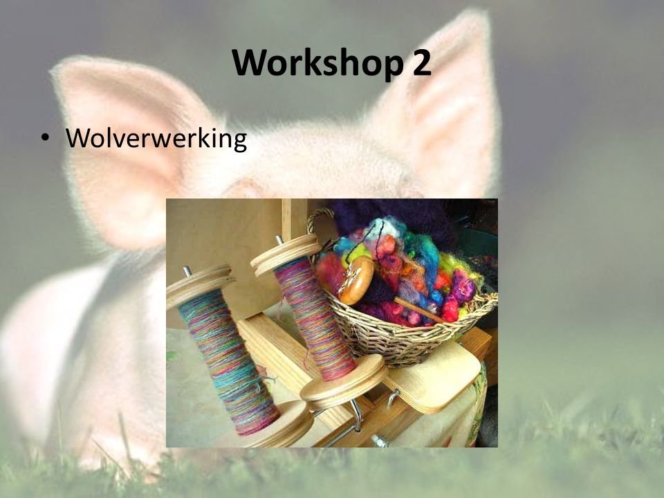 Workshop 2 Wolverwerking