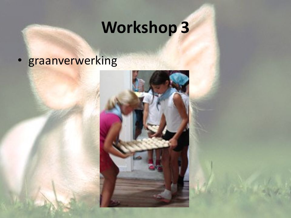 Workshop 3 graanverwerking