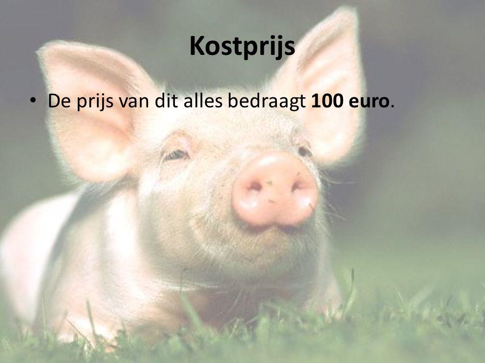 Kostprijs De prijs van dit alles bedraagt 100 euro.