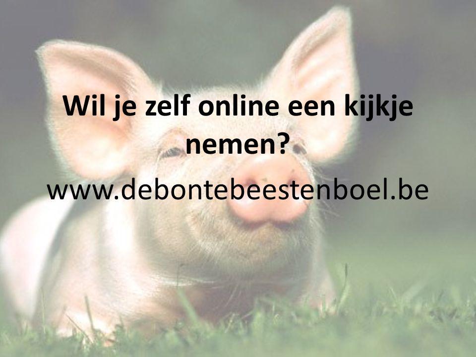 Wil je zelf online een kijkje nemen www.debontebeestenboel.be