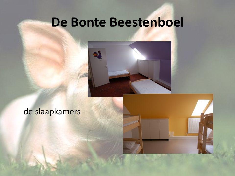 De Bonte Beestenboel de slaapkamers