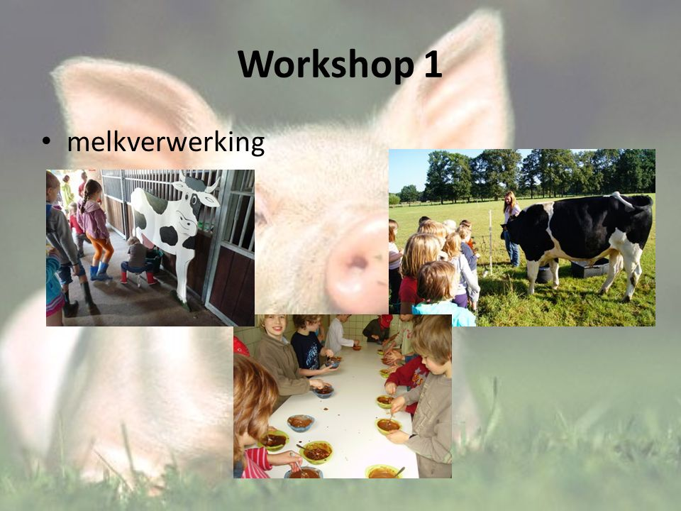 Workshop 1 melkverwerking