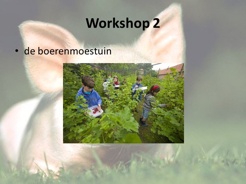 Workshop 2 de boerenmoestuin