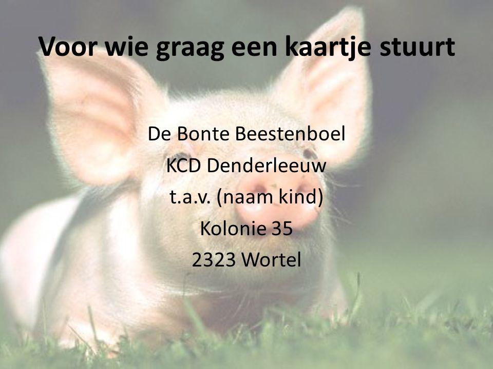 Voor wie graag een kaartje stuurt De Bonte Beestenboel KCD Denderleeuw t.a.v.