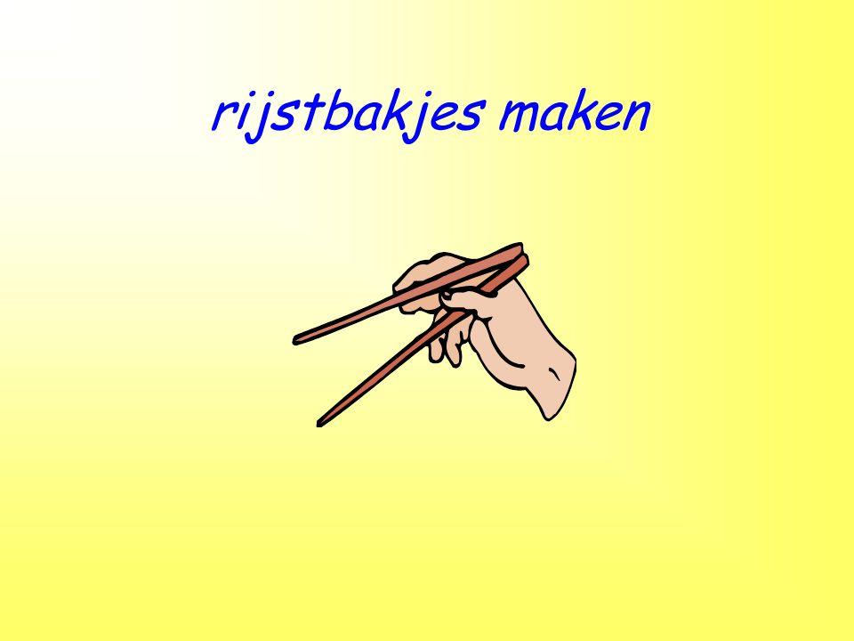 rijstbakjes maken