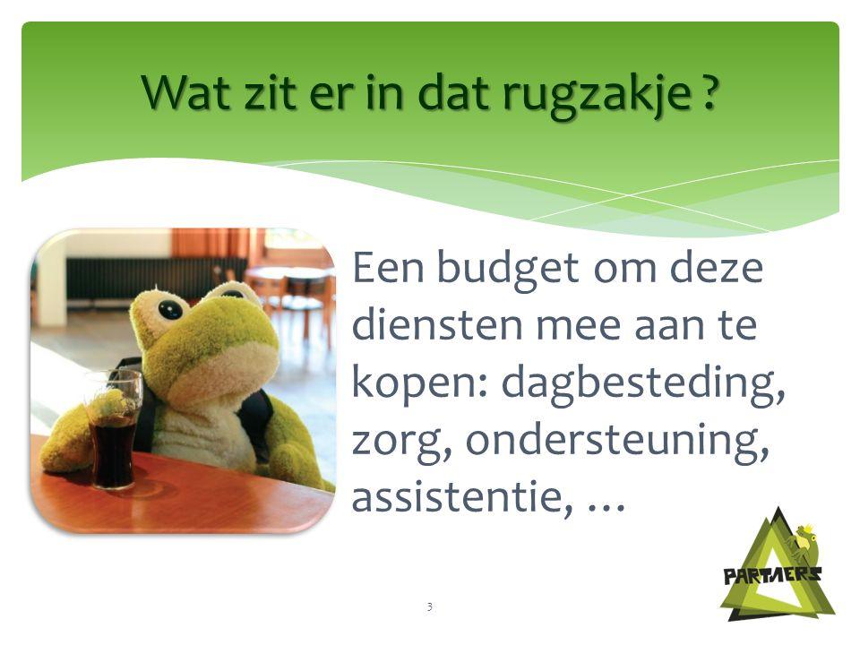 Een budget om deze diensten mee aan te kopen: dagbesteding, zorg, ondersteuning, assistentie, … Wat zit er in dat rugzakje .