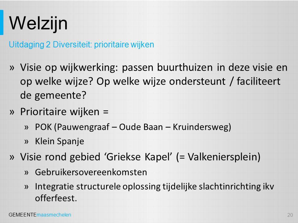 GEMEENTEmaasmechelen Welzijn »Visie op wijkwerking: passen buurthuizen in deze visie en op welke wijze.