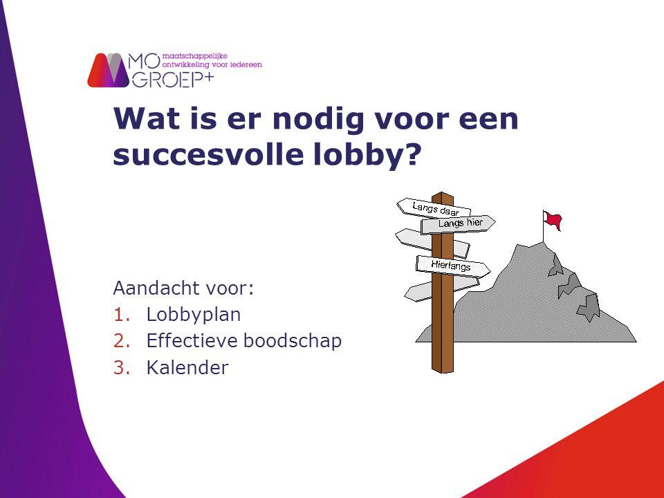 Wat is er nodig voor een succesvolle lobby.