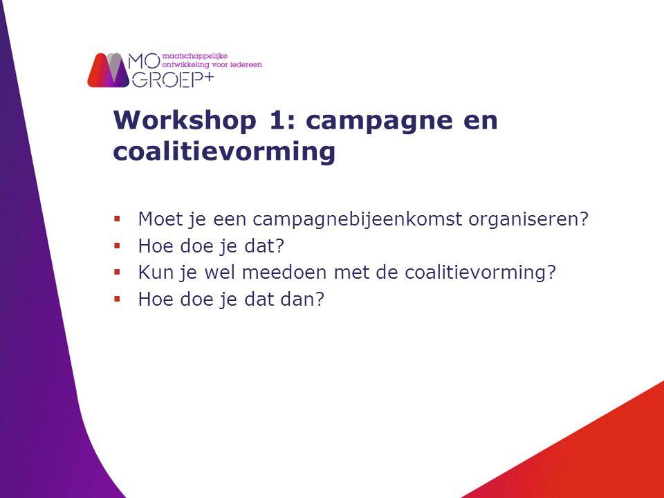 Workshop 1: campagne en coalitievorming  Moet je een campagnebijeenkomst organiseren.
