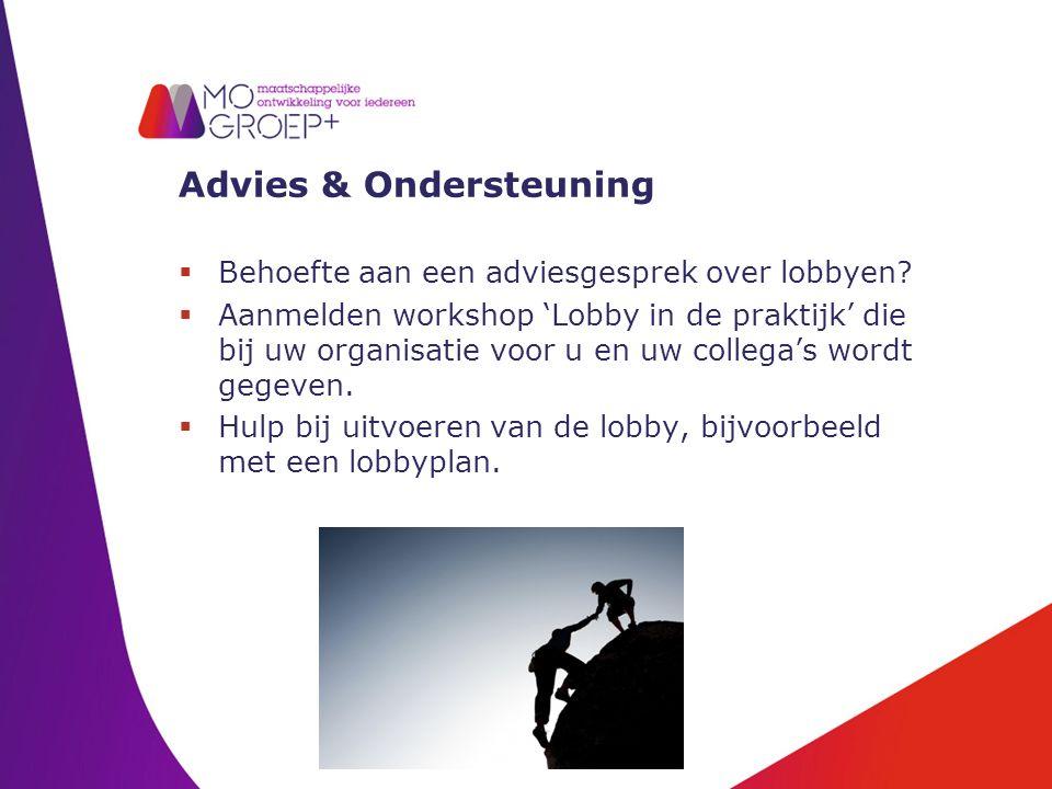 Advies & Ondersteuning  Behoefte aan een adviesgesprek over lobbyen.