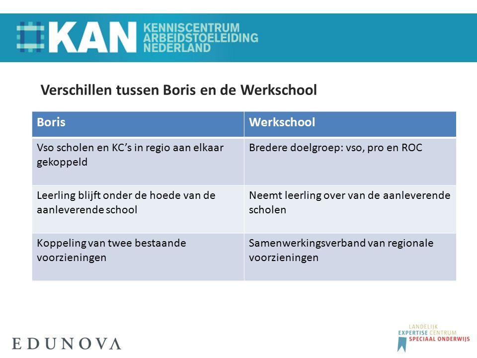 Verschillen tussen Boris en de Werkschool BorisWerkschool Vso scholen en KC's in regio aan elkaar gekoppeld Bredere doelgroep: vso, pro en ROC Leerlin