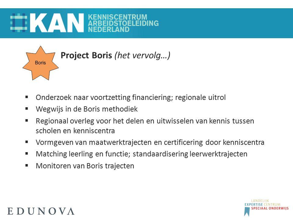 Project Boris (het vervolg…)  Onderzoek naar voortzetting financiering; regionale uitrol  Wegwijs in de Boris methodiek  Regionaal overleg voor het
