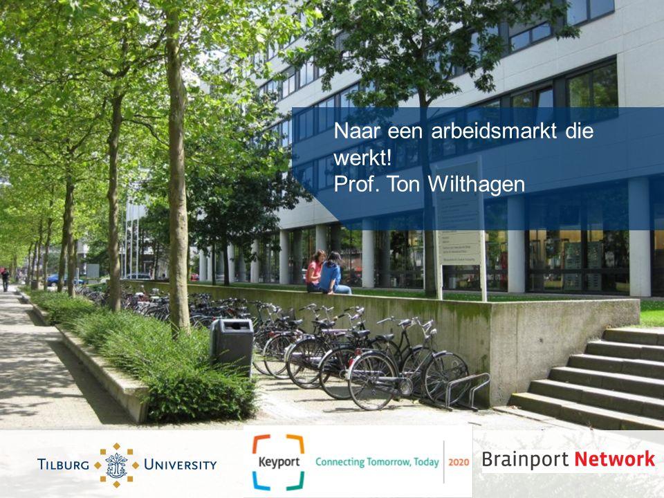 Naar een arbeidsmarkt die werkt! Prof. Ton Wilthagen