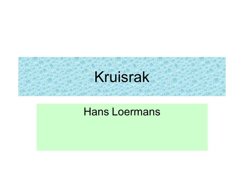 Kruisrak Hans Loermans