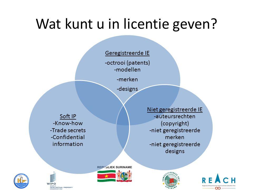 Wat kunt u in licentie geven.