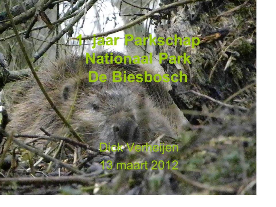 1 jaar Parkschap Nationaal Park De Biesbosch Dick Verheijen 13 maart 2012